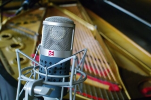 Mikrofonspinne